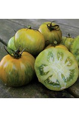 Seed Savers Tomato - Green Zebra