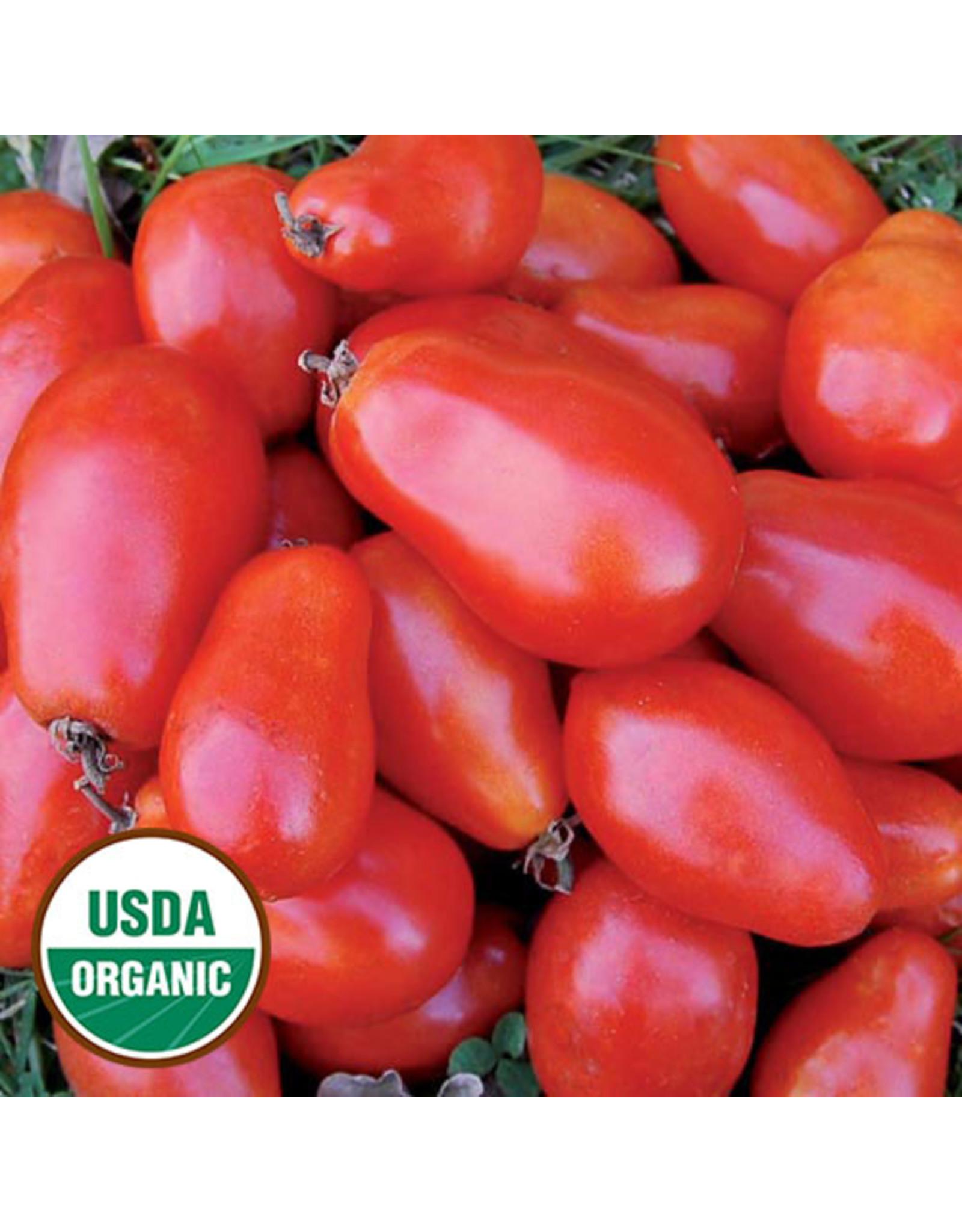 Seed Savers Tomato - Martino's Roma