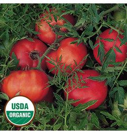 Seed Savers Tomato - Silvery Fir Tree