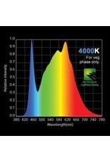 HLG HLG 100 V2 - 4000K