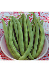 Seed Savers Bean - Kentucky Wonder Bush