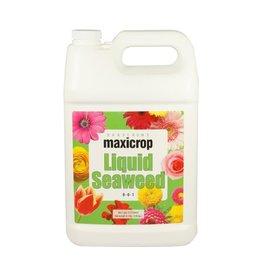 Maxicrop Maxicrop Liquid Seaweed - gal