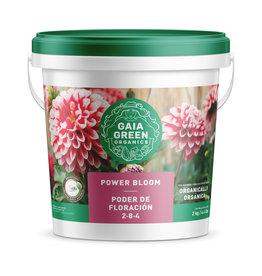 Gaia Green Gaia Green Power Bloom, 2 kg