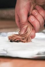 Pearhead Pawprints Desk Frame and Impression Kit