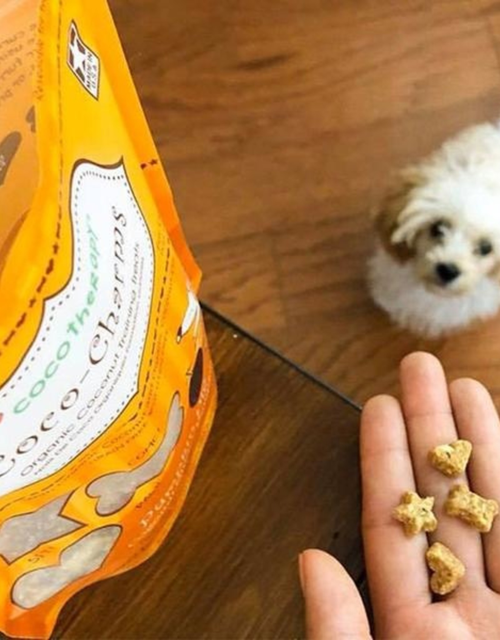 Coco Therapy Coco Charms Pumpkin Pie