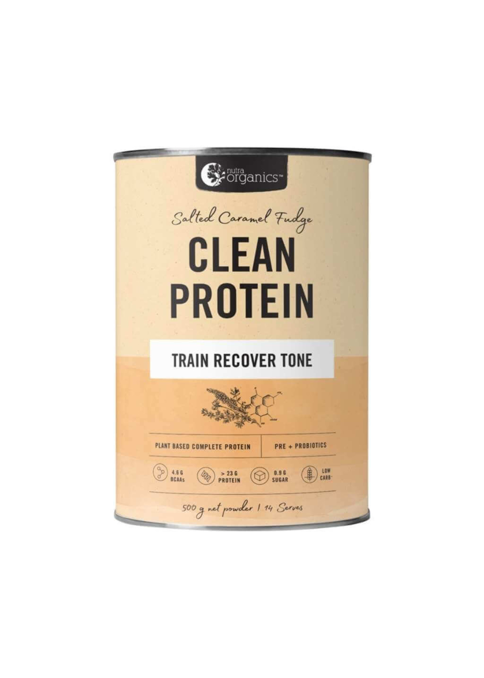 Nutra Organics Nuta Organics Clean Protein Salted Caramel Fudge 500g