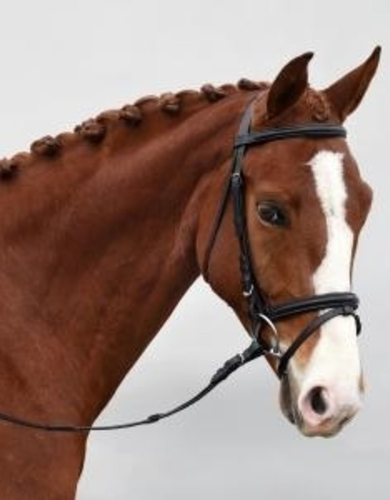 Bobbys Self Lined Bridle with Flash