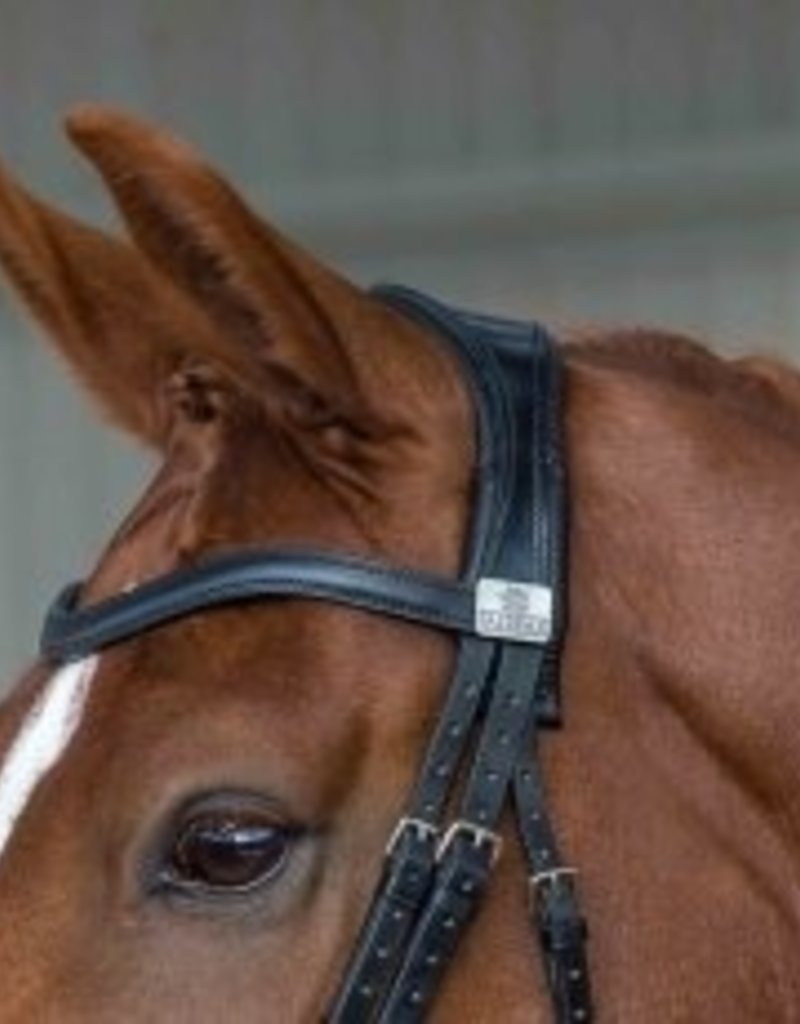 Fairfax Stallion Snaffle Bridle Head Piece Black