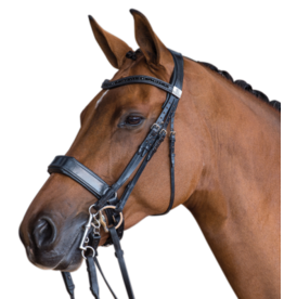 Fairfax XL Cavesson Noseband Black
