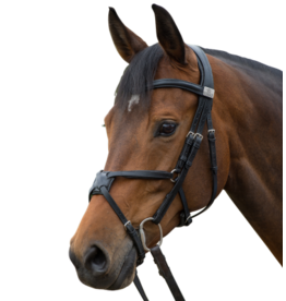 Fairfax Large Grackle Noseband Black