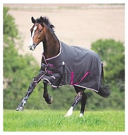 Shires Highlander Plus 300 Standard Neck
