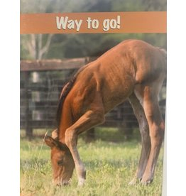 Horse Hollow Press Foal Congratulations Card