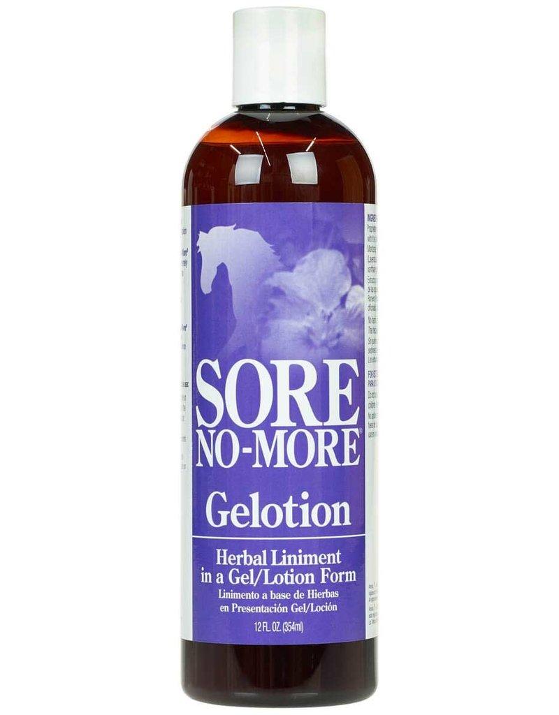 Arenus Sore No-More Performance Gelotion 12oz