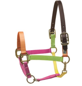 Perris Pony Two-Tone Nylon Safety Halter