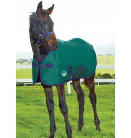 Weatherbeeta 1200D  Foal Standard Neck Medium