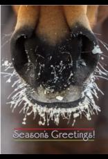 Horse Hollow Press Christmas Greeting Card