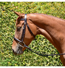 Bobbys Fancy Padded Bridle with Reins