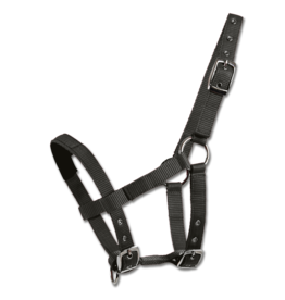 Waldhausen Nylon Mini Halter Black