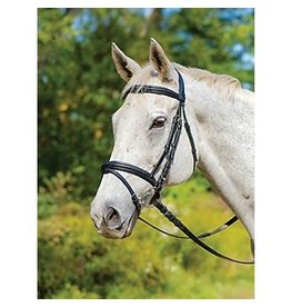 Shires Avignon Louisville Bridle Havana Full