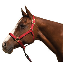 Toklat The Blocker Halter with Cable Reinforced Crown and Noseband