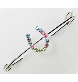 Finishing Touch Pastel Rhinestone Horseshoe Stock Pin Medium Silver