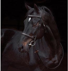 Horseware Amigo Deluxe Hunter Bridle Havana Small Horse