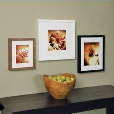 AZ Frame Gallery 12X18 Espresso