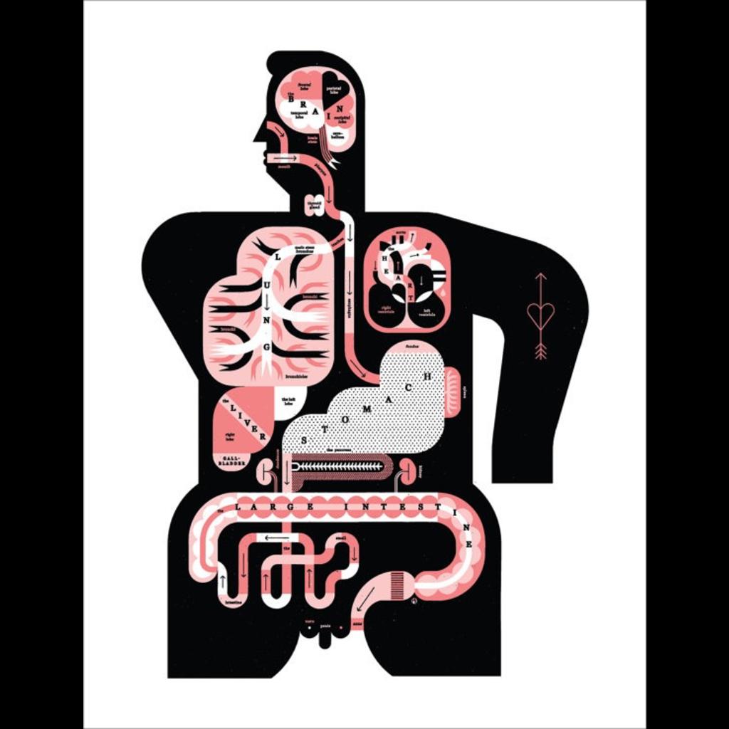 R. Biesinger Raymond Biesinger | Male Anatomy