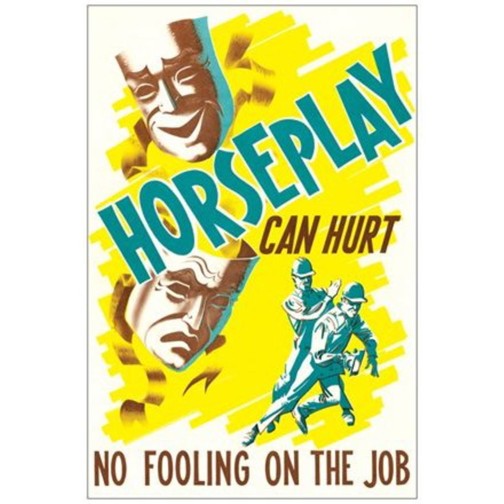 Vivid Print Horseplay Can Hurt Postcard