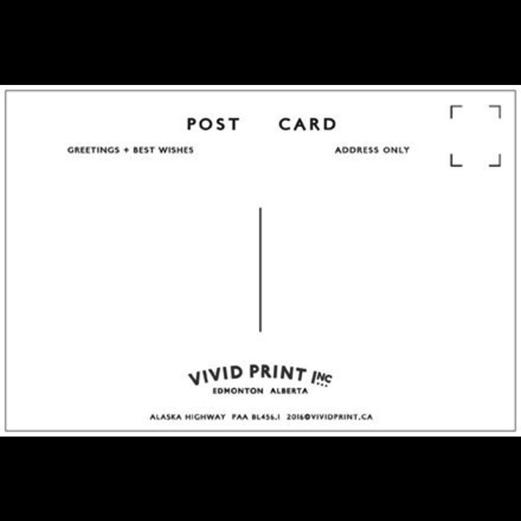 Vivid Print Alaska Highway Postcard