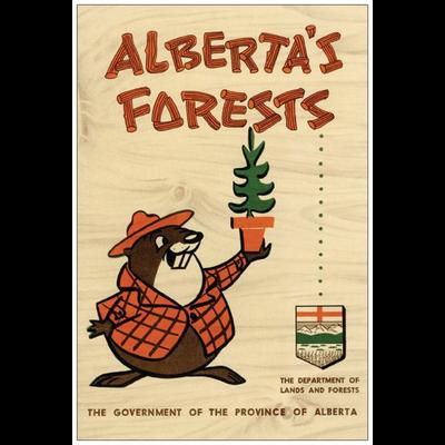 Vivid Print Alberta's Forests Bertie Beaver Postcard