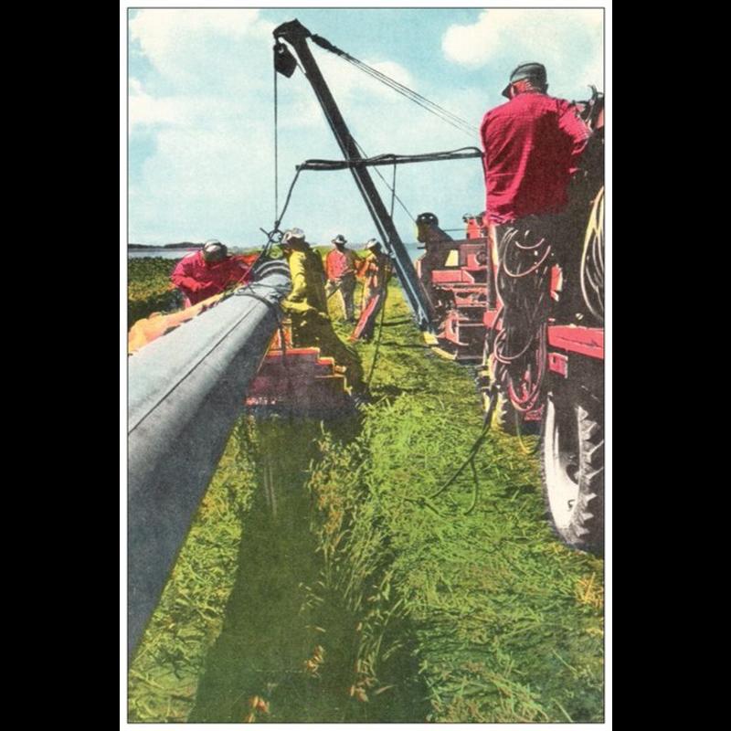 Vivid Print Laying Pipe Postcard