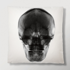Imm Radiant Relics Cushions - Skull X-Ray