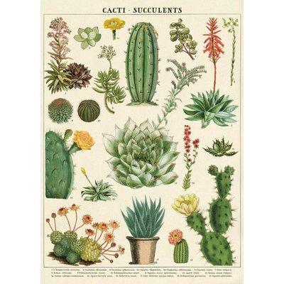 Cavallini Cacti & Succulents Wrap Sheet
