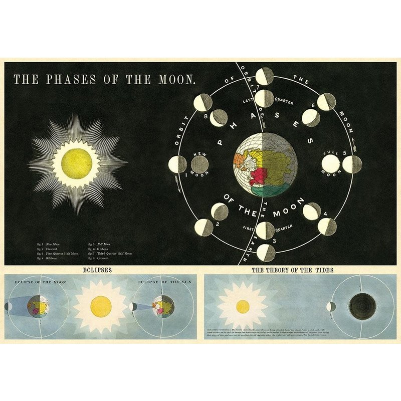 Cavallini Phases of the Moon Wrap Sheet