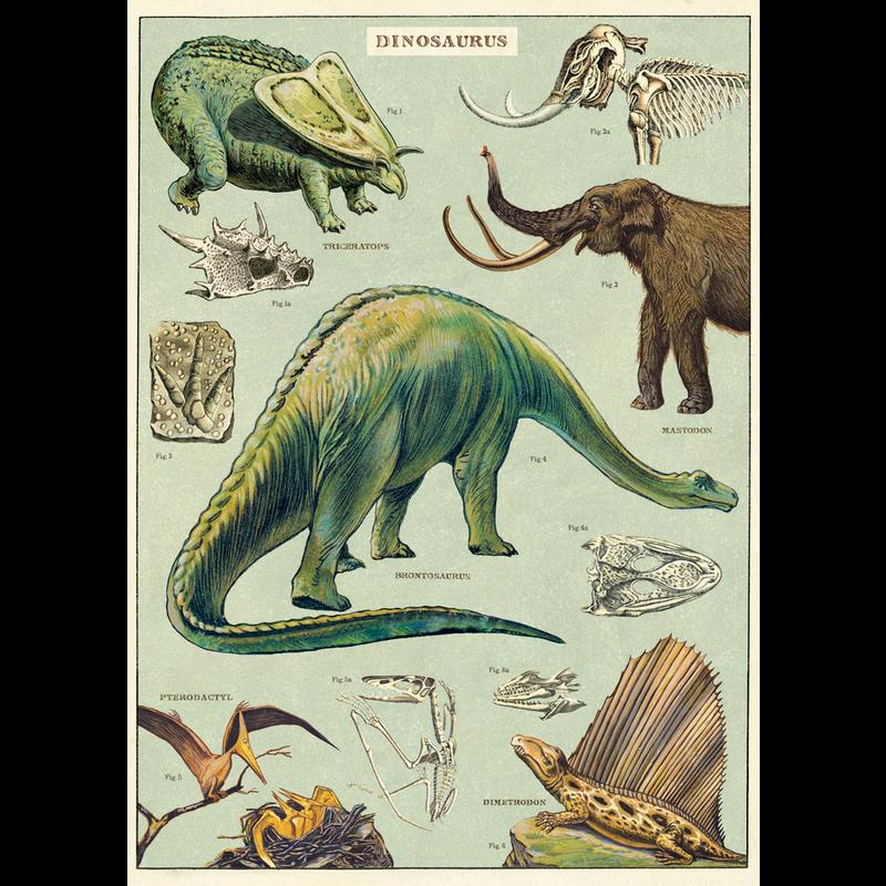 Cavallini Dinosaurs Wrap Sheet