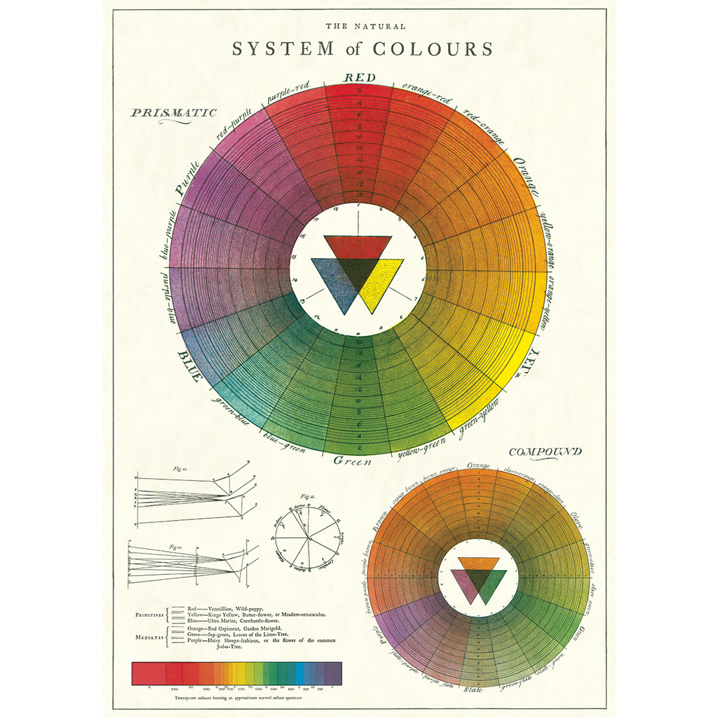 Cavallini Color Wheel Wrap Sheet