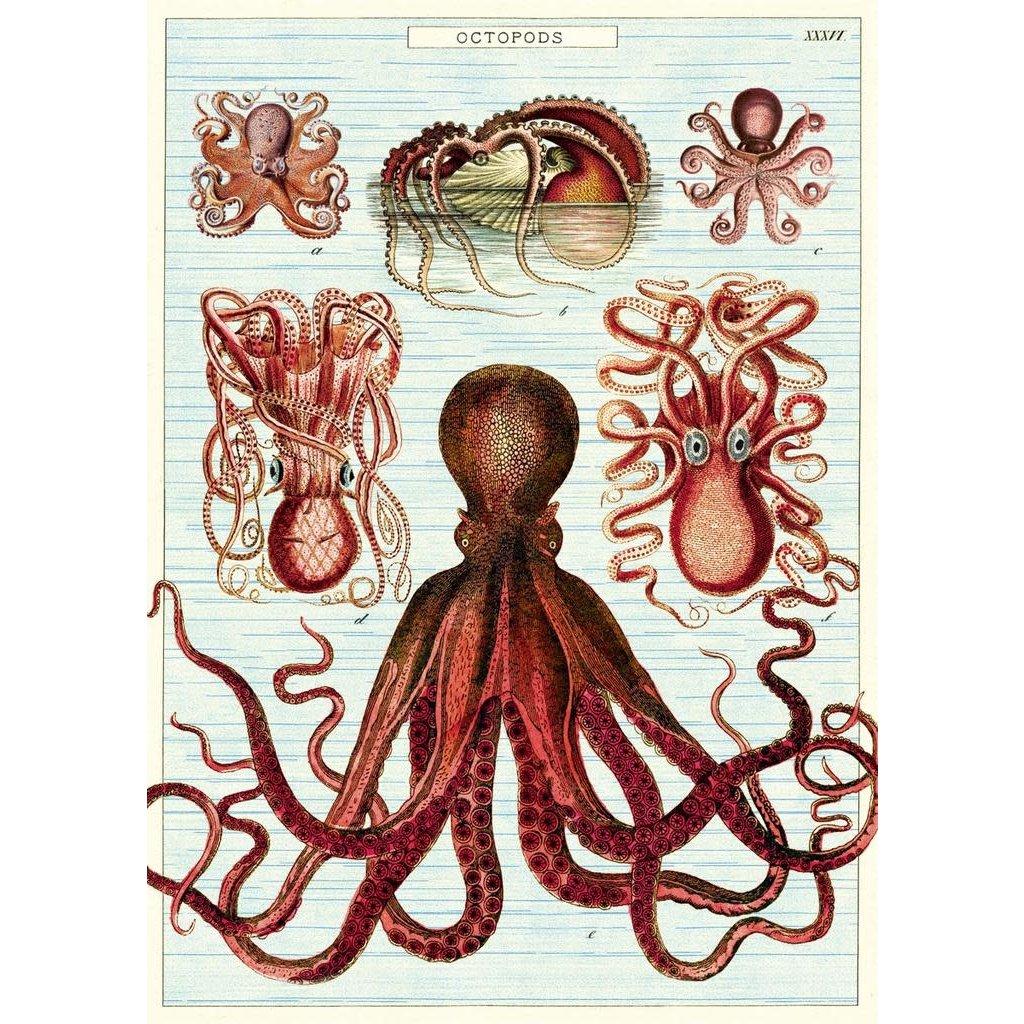 Cavallini Octopods Wrap Sheet
