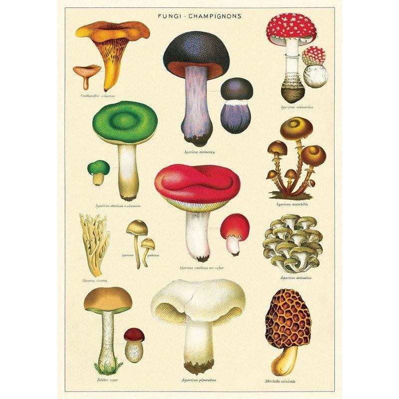 Cavallini Mushrooms 2 Wrap Sheet