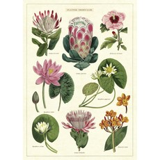 Cavallini Tropical Flowers Wrap Sheet