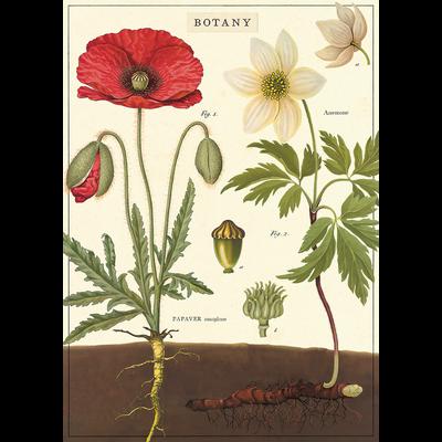 Cavallini Botany Wrap Sheet