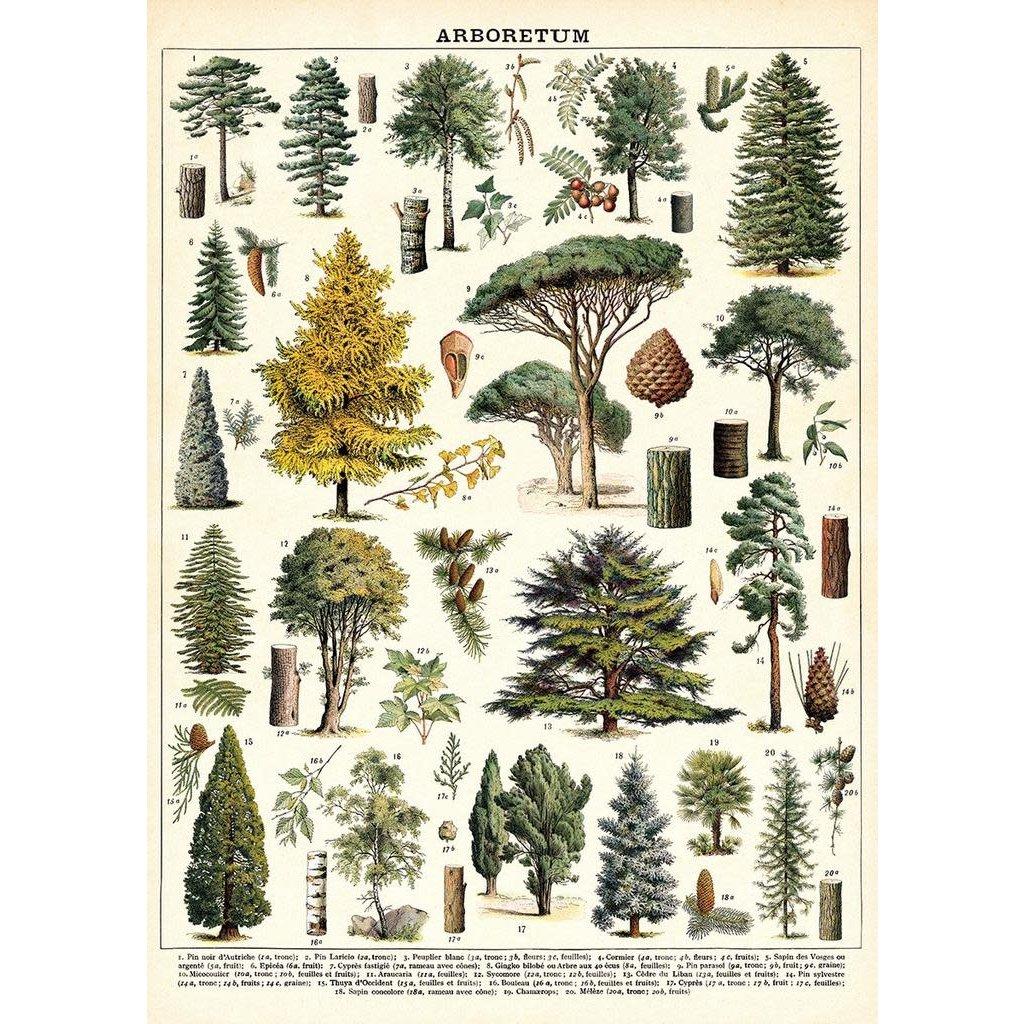 Cavallini Arboretum Wrap Sheet