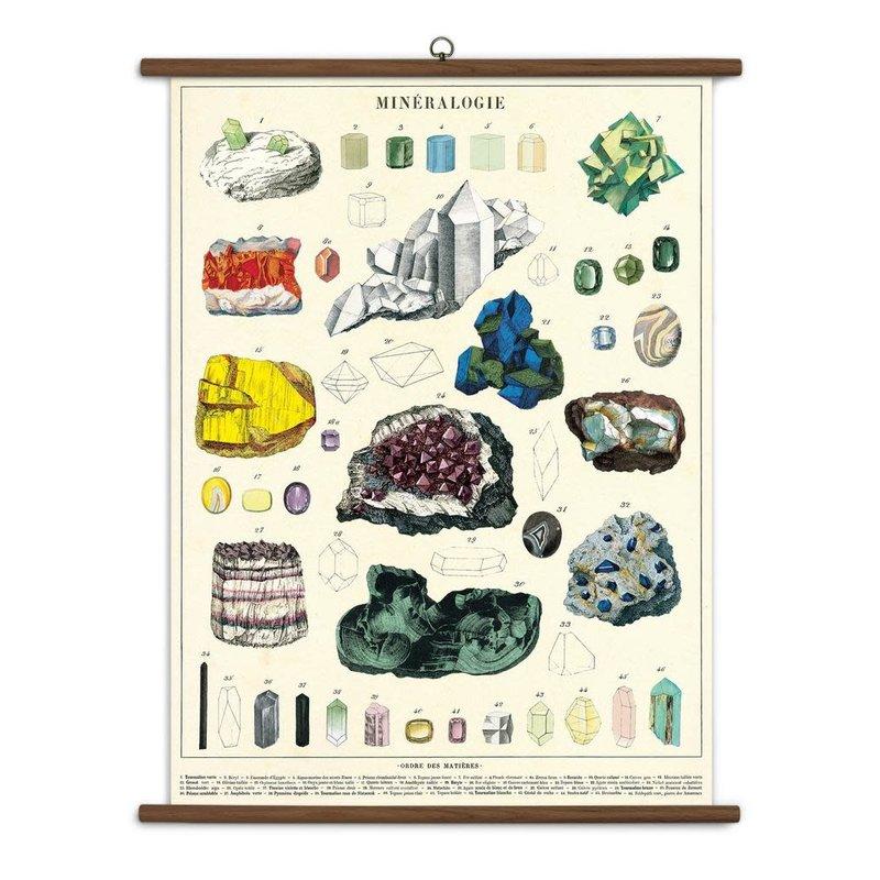 Cavallini Mineralogy Vintage School Chart