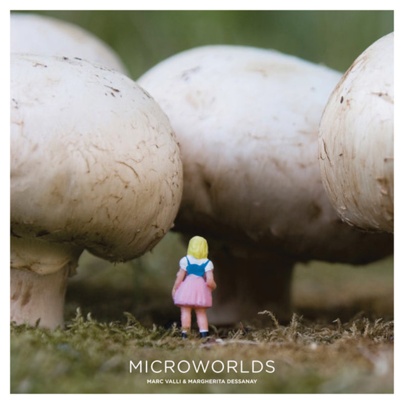 Laurence King Publishing Microworlds