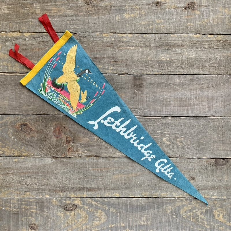 Vivid Vintage Vintage Lethbridge Pennant Light Blue