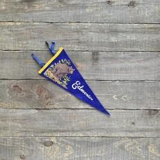 Vivid Vintage Vintage Edmonton Pennant Blue