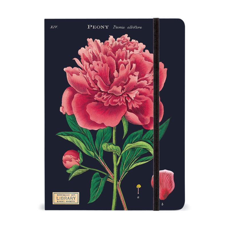 Cavallini Botany Large Notebook
