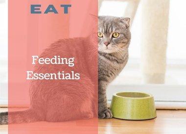 Feeding Essentials