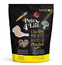 Pets 4 Life Pets 4 Life Cat-All Formulas & Sizes