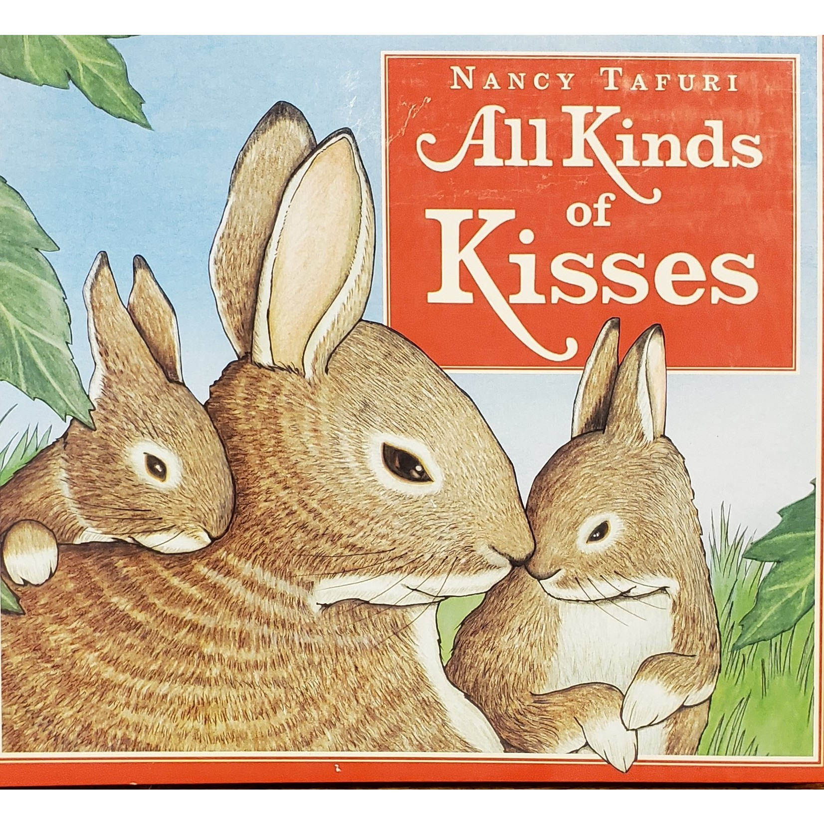 Hachette Book Group Book: All Kinds of Kisses